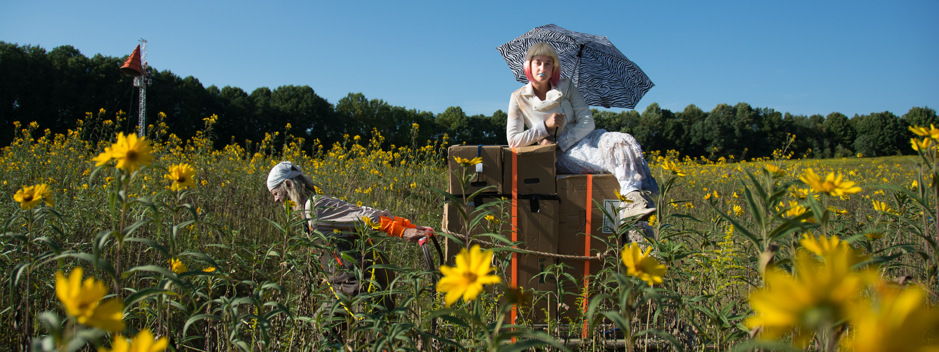 188522_lost-in-the-meadow_coletti_-heather-_longwood-volunteer-photographer_